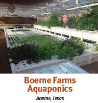 boerne farms