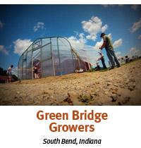 green bridge growers