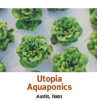 utopia aquaponics